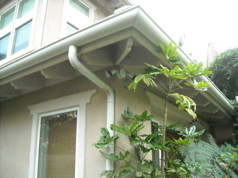 Hid Conduit Behind Plants For Lighting In Backyard of Home In San Clemente CA